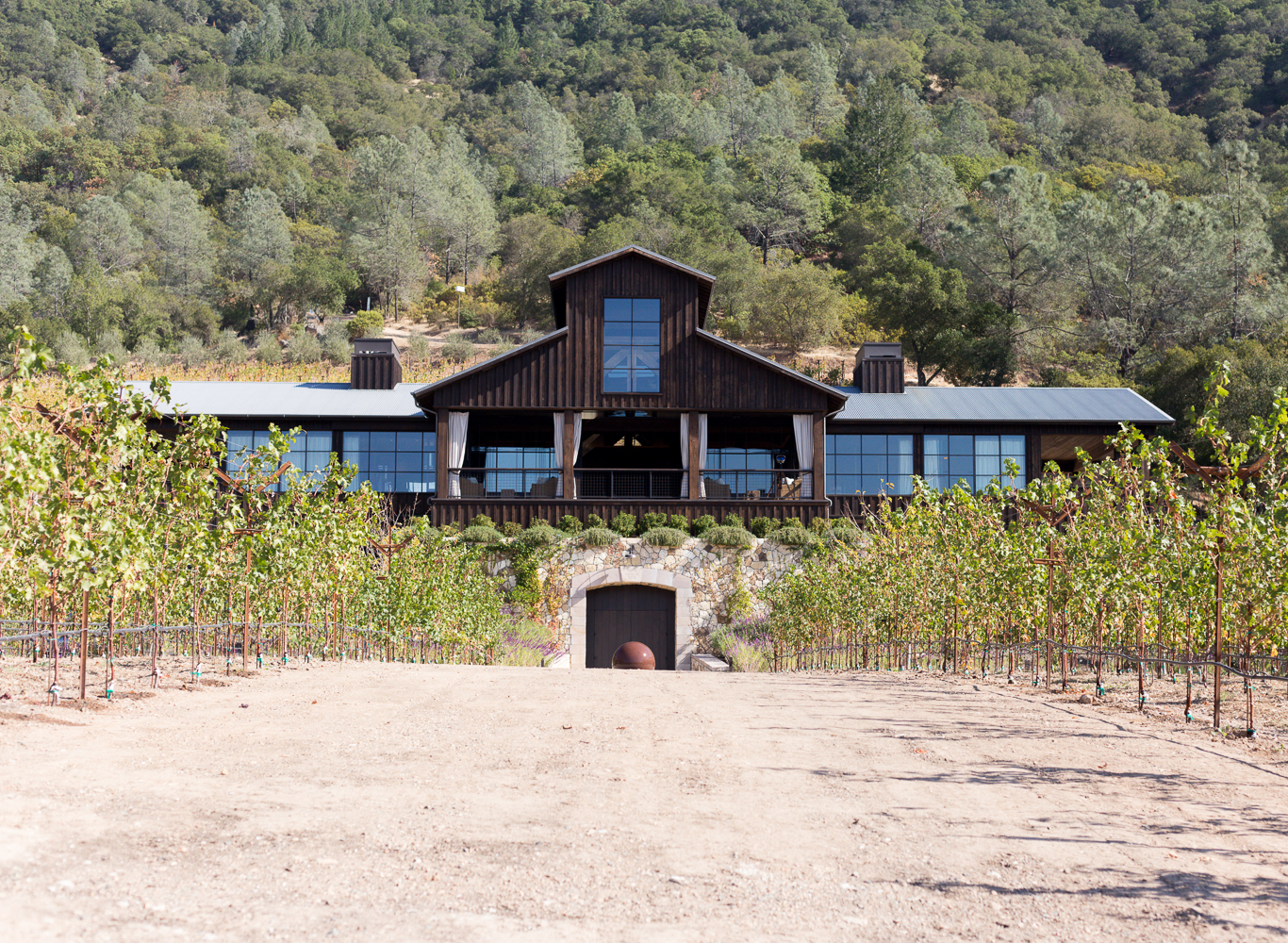 A Day Trip To Napa Valley