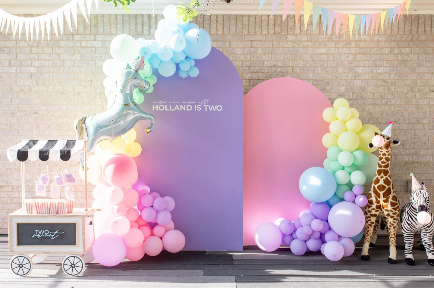 Kids Carnival Birthday Party